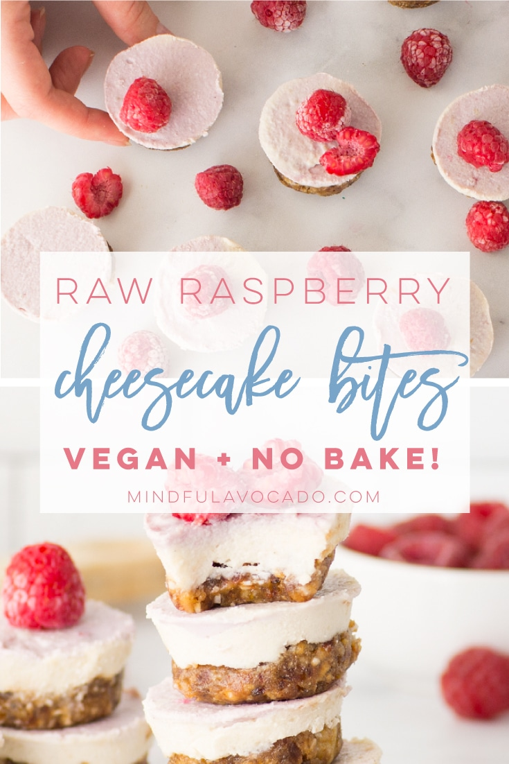 Raspberry raw mini cheesecake bites are the perfect no bake recipe. So easy to make and healthy! #vegan #glutenfree #paleo #vegandessert #raw #raspberrycheesecake #healthy | mindfulavocado