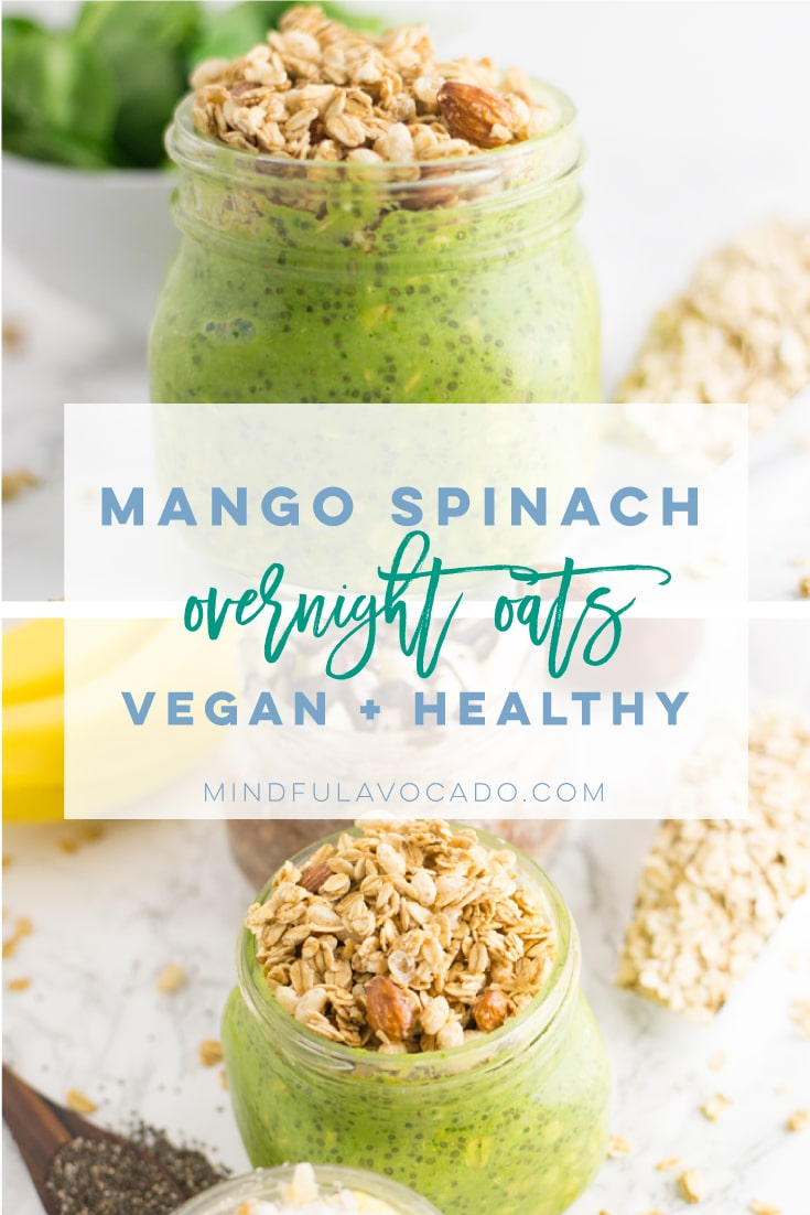 Vegan and GF overnight oats are so easy to make and is a great healthy breakfast recipe! Great for meal prepping too! From chocolate, to tropical, and a spinach flavor, you'll find a combination you LOVE! #vegan #cleaneating #vegetarian #veganbreakfast #glutenfree #healthy - mindfulavocado