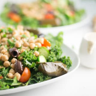closeup image of vegan greek salad