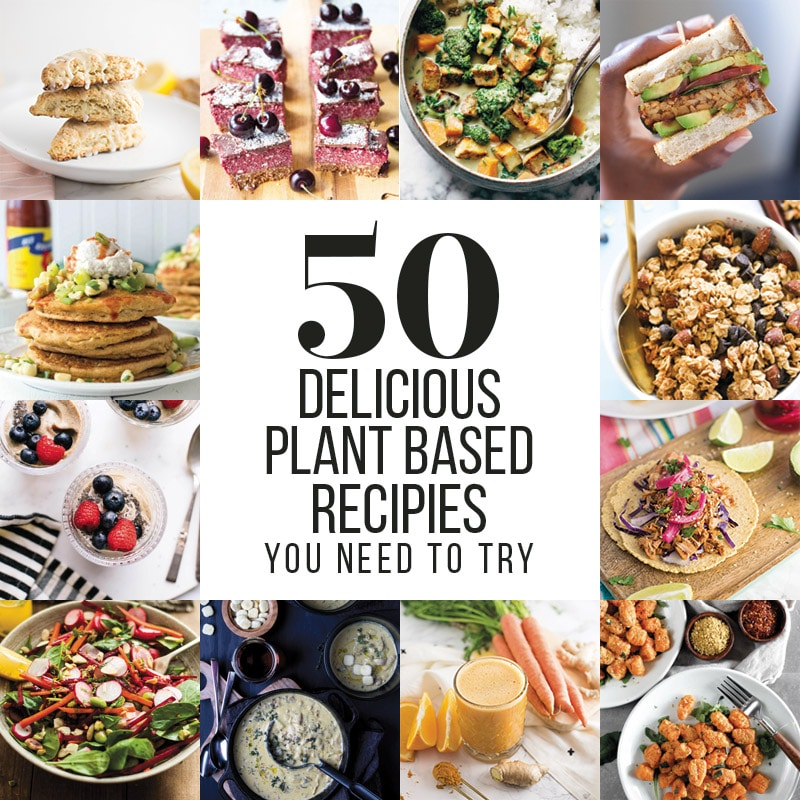 50 plant based recipe ideas