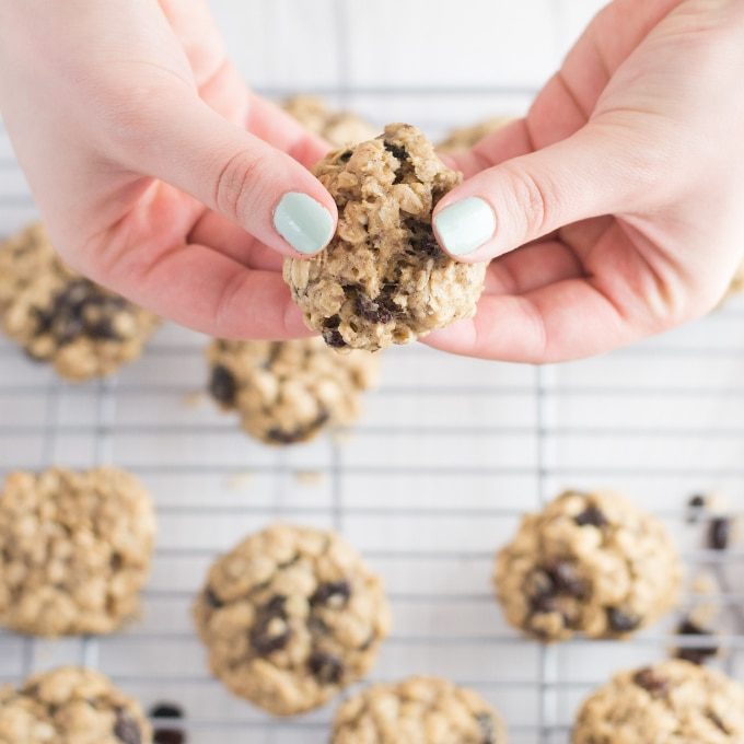 hands pulling apart soft vegan oatmeal raisin cookie