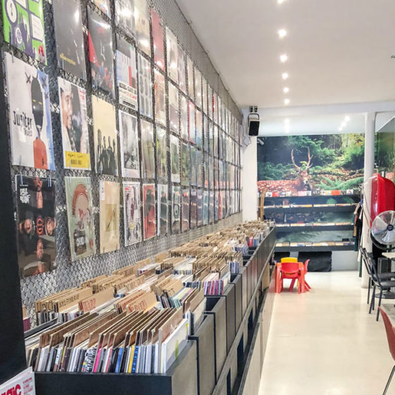 vinyls at walrus in paris, france