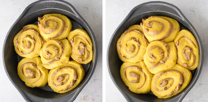 cinnamon rolls in pan before and after proofing