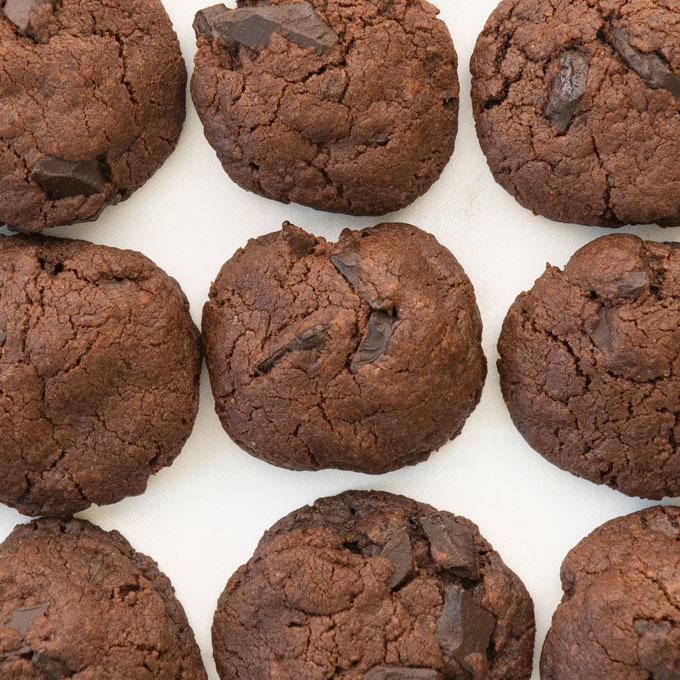 cocoa cookies with chocolate chunks