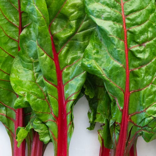 All About Swiss Chard