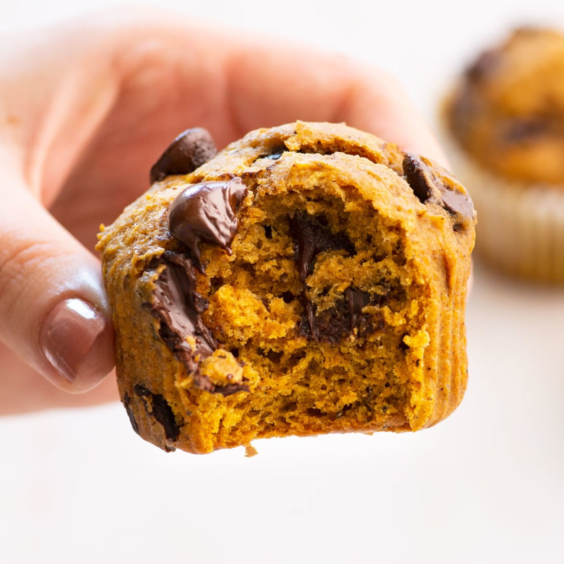 close up view of bite taken from a vegan pumpkin muffin with chocolate chips